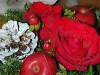 041127クリスマスフラワー.jpg