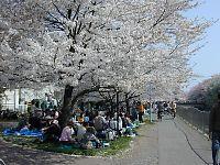 050410阿佐ヶ谷団地06.jpg