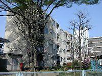 050410中野02.jpg