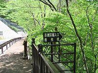 050504吾妻渓谷01.jpg