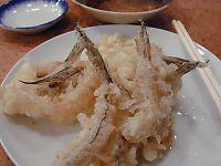 051215魚三05.jpg