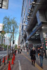 080101吉祥寺散歩10.jpg