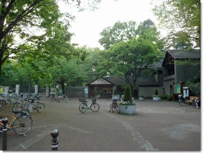080427井の頭公園01.jpg