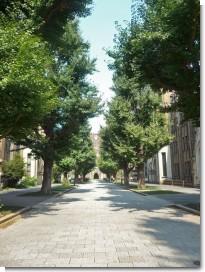 080808東京大学06.jpg