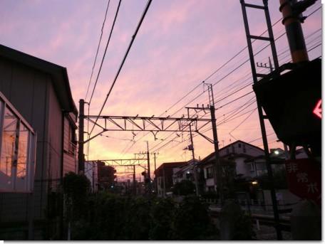 090919秋元屋15.jpg