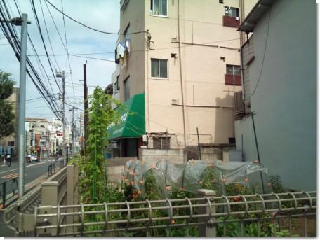 100808吉祥寺界隈05.jpg