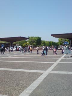 0429-1 昭和記念公園!