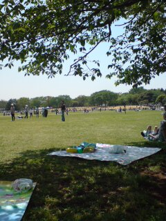 0429-2 昭和記念公園2!
